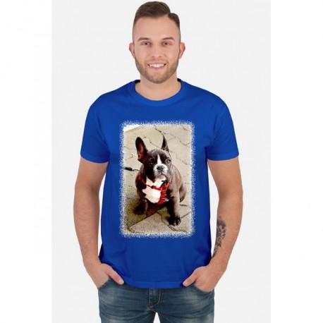 Psiak - cartoon - charytatywna koszulka męska z nadrukiem